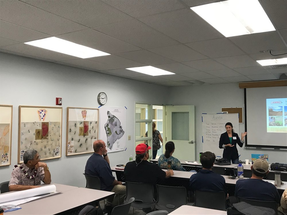 Hawaii Island Hilo Vegetative Fuels Management Collaborative Action Planning Workshop_2_22_2019_3.jpg
