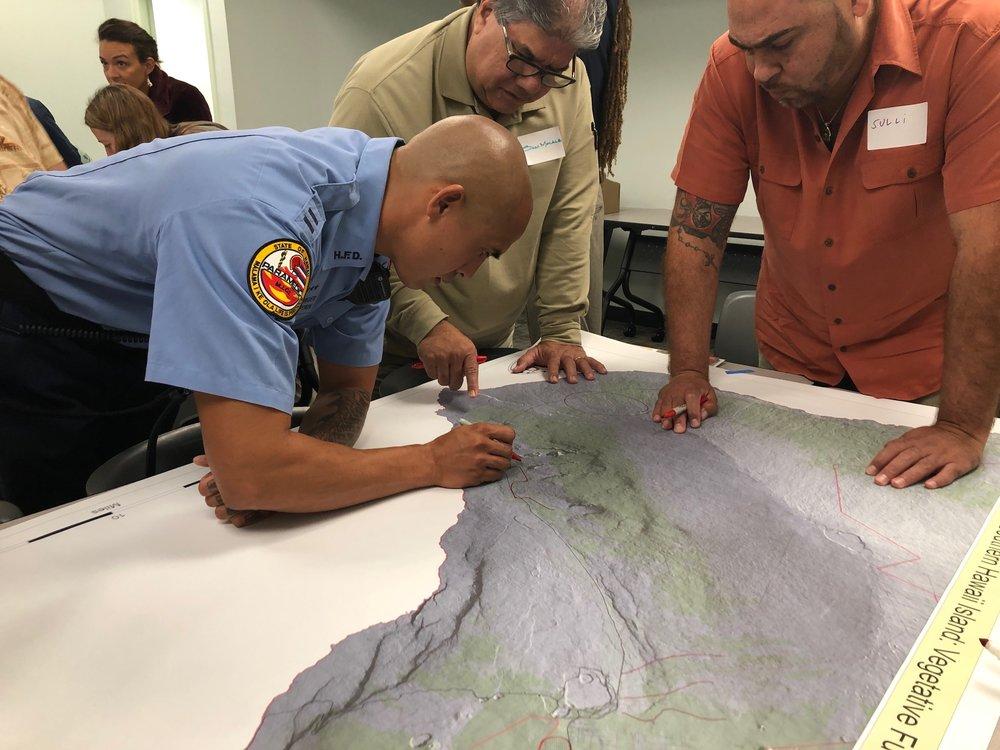 Hawaii Island Hilo Vegetative Fuels Management Collaborative Action Planning Workshop_2_22_2019_7.jpg