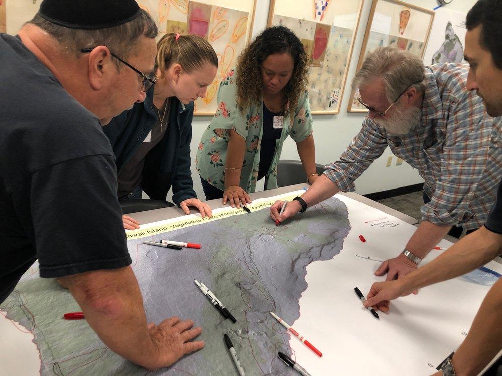 Hawaii Island Hilo Vegetative Fuels Management Collaborative Action Planning Workshop_2_22_2019_18.jpg