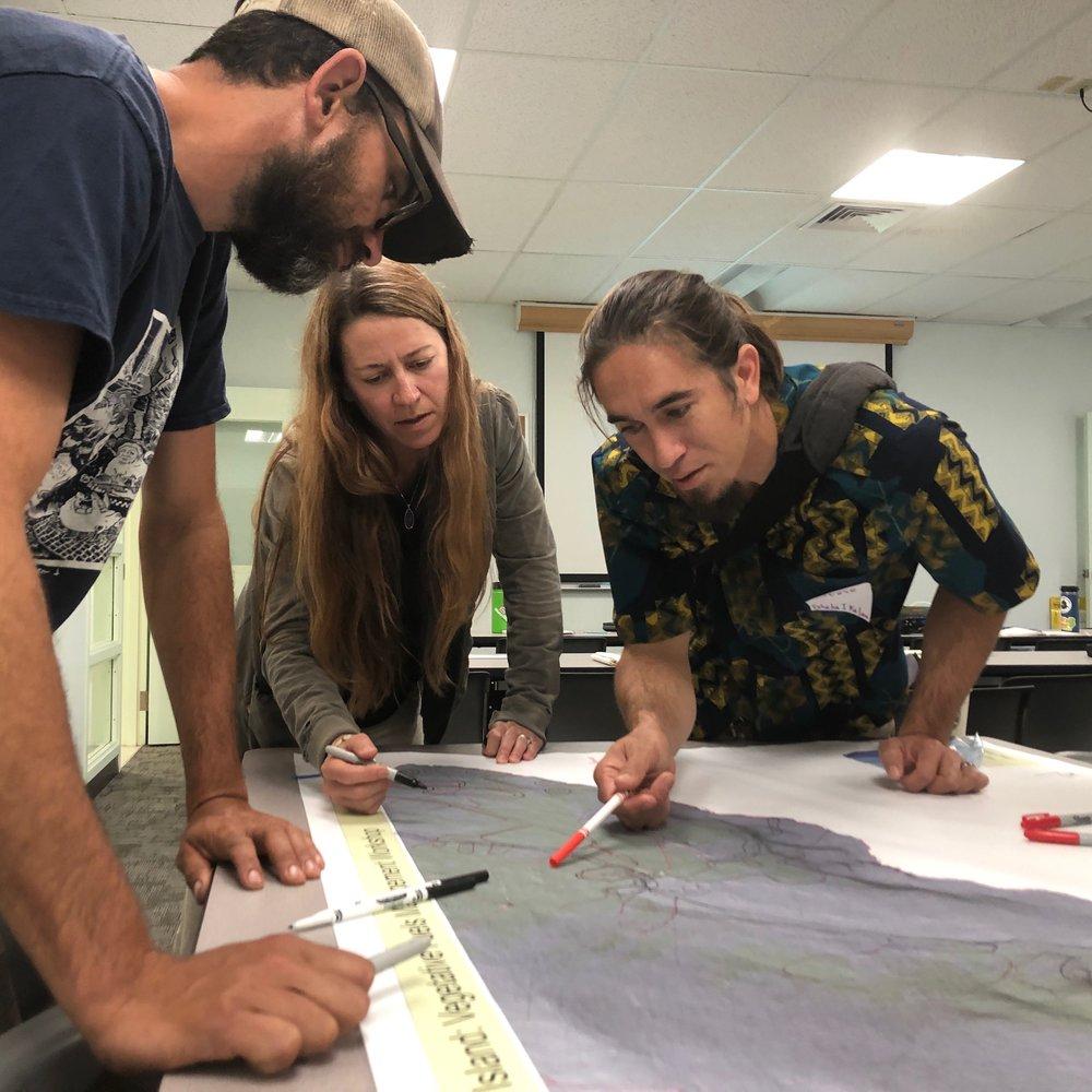 Hawaii Island Hilo Vegetative Fuels Management Collaborative Action Planning Workshop_2_22_2019_23.jpg