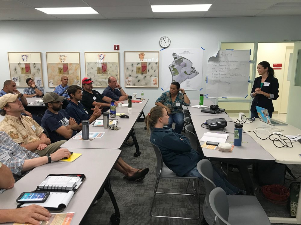 Hawaii Island Hilo Vegetative Fuels Management Collaborative Action Planning Workshop_2_22_2019_26.jpg
