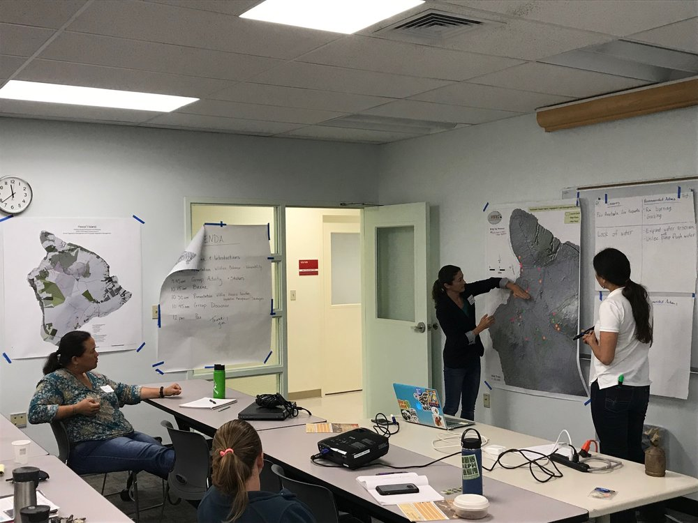 Hawaii Island Hilo Vegetative Fuels Management Collaborative Action Planning Workshop_2_22_2019_31.jpg