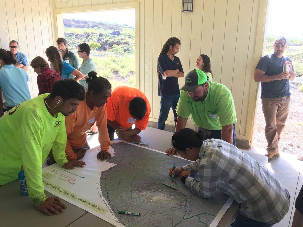 Hawaii Island Kailapa Vegetative Fuels Management Collaborative Action Planning Workshop_2_26_2019_27.jpg