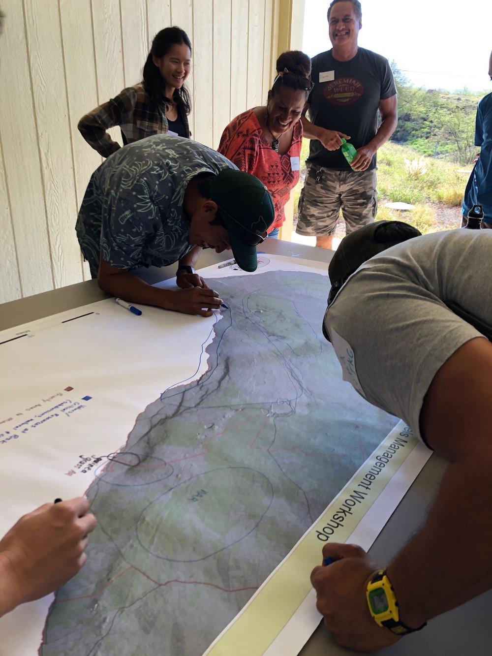 Hawaii Island Kailapa Vegetative Fuels Management Collaborative Action Planning Workshop_2_26_2019_30.jpg