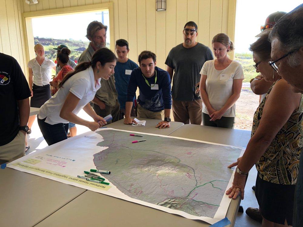Hawaii Island Kailapa Vegetative Fuels Management Collaborative Action Planning Workshop_2_26_2019_37.jpg