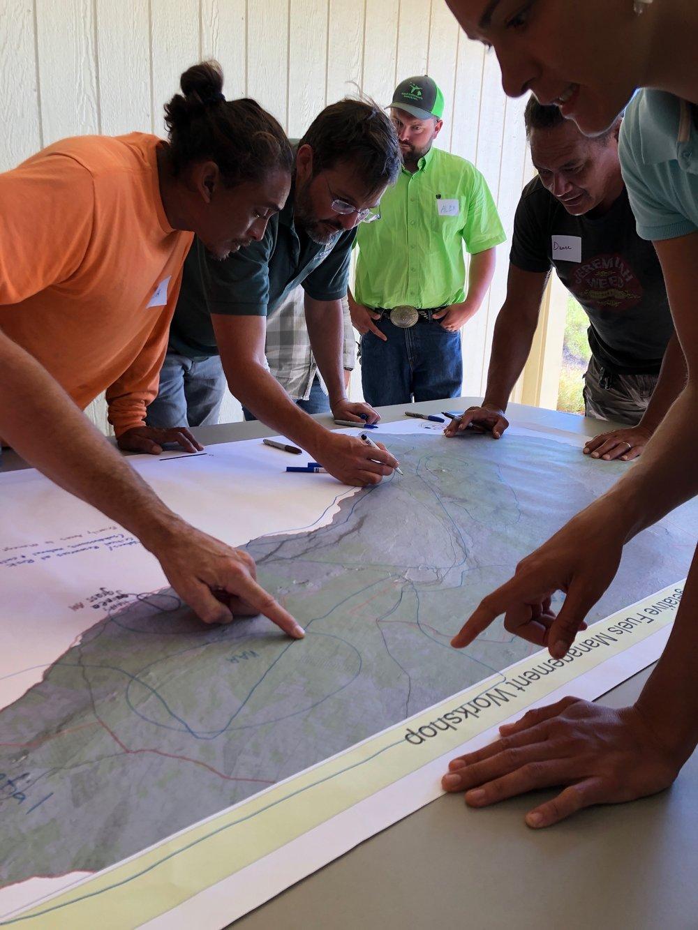 Hawaii Island Kailapa Vegetative Fuels Management Collaborative Action Planning Workshop_2_26_2019_38.jpg