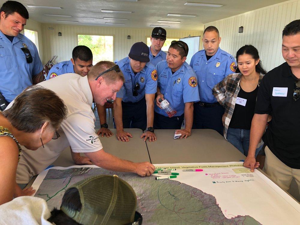 Hawaii Island Kailapa Vegetative Fuels Management Collaborative Action Planning Workshop_2_26_2019_43.jpg
