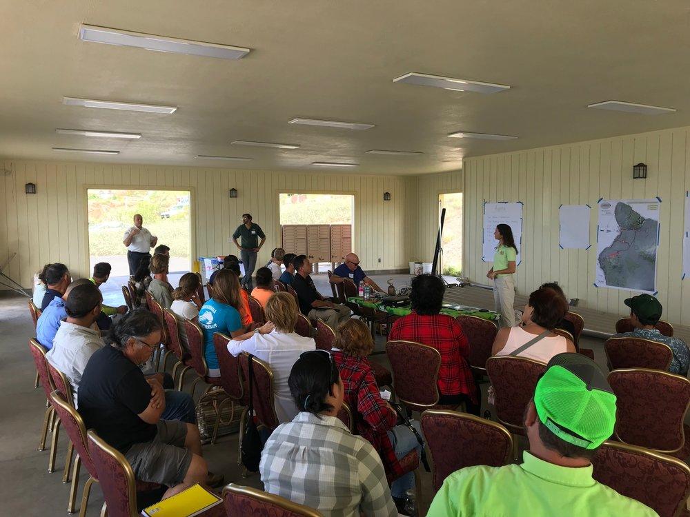 Hawaii Island Kailapa Vegetative Fuels Management Collaborative Action Planning Workshop_2_26_2019_60.jpg