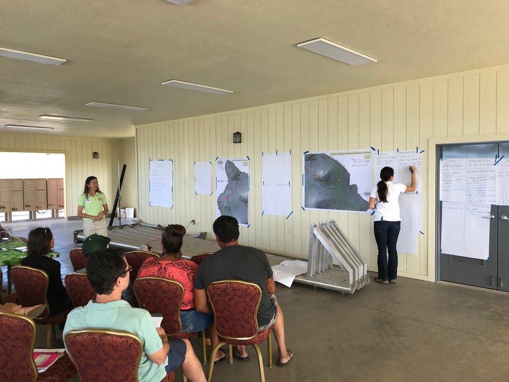 Hawaii Island Kailapa Vegetative Fuels Management Collaborative Action Planning Workshop_2_26_2019_61.jpg