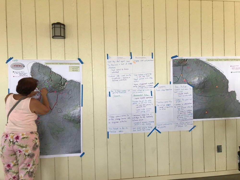 Hawaii Island Kailapa Vegetative Fuels Management Collaborative Action Planning Workshop_2_26_2019_70.jpg