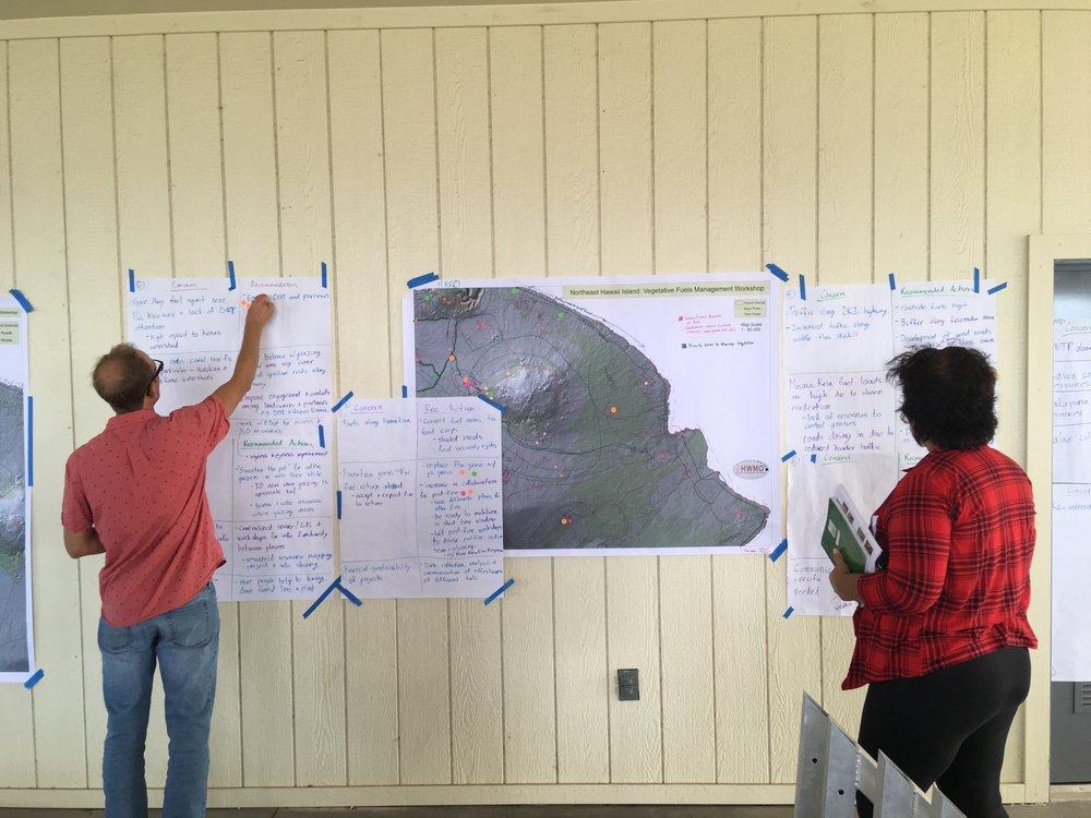 Hawaii Island Kailapa Vegetative Fuels Management Collaborative Action Planning Workshop_2_26_2019_72.jpg