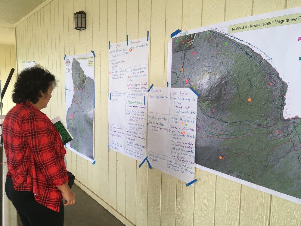 Hawaii Island Kailapa Vegetative Fuels Management Collaborative Action Planning Workshop_2_26_2019_73.jpg