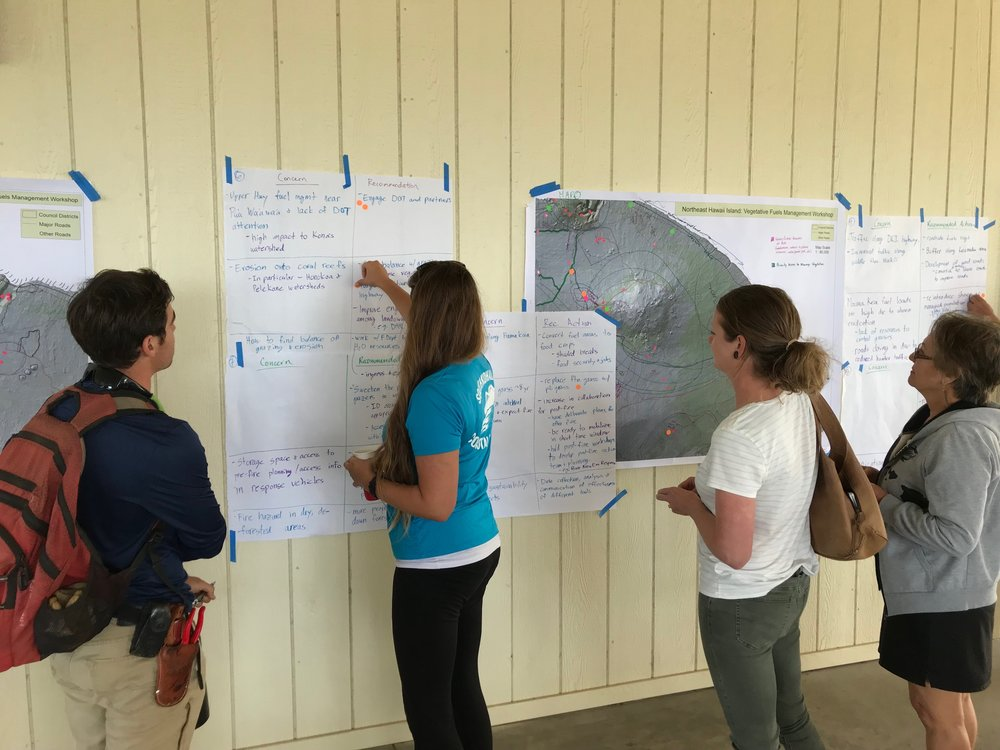 Hawaii Island Kailapa Vegetative Fuels Management Collaborative Action Planning Workshop_2_26_2019_74.jpg