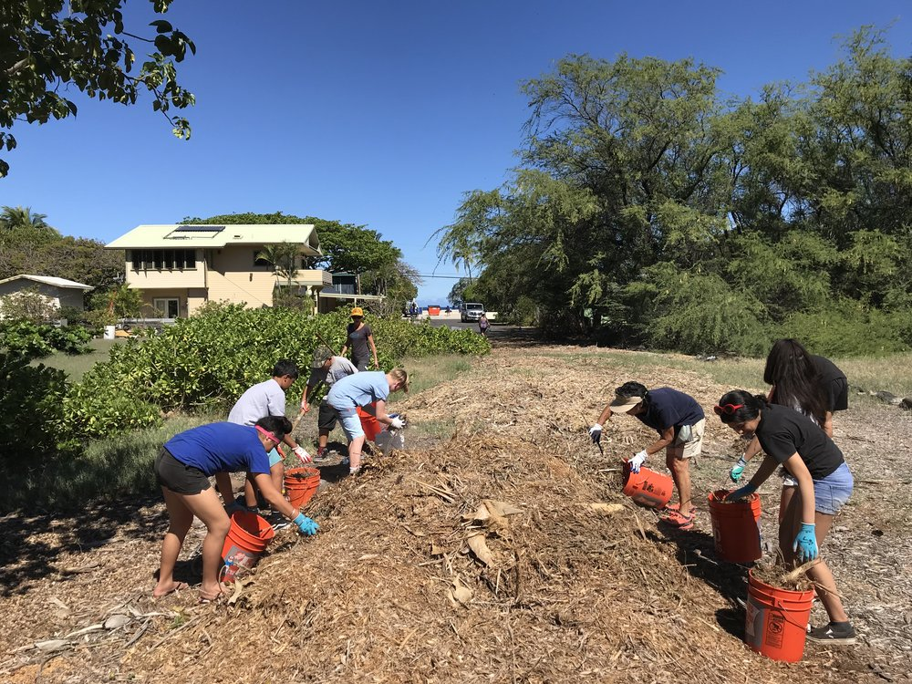Waimea Middle School IKAIR Day at Puako Fuelbreak_3_14_2019_5.jpg