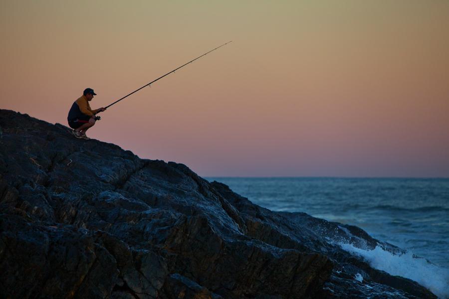 fisher1.jpg