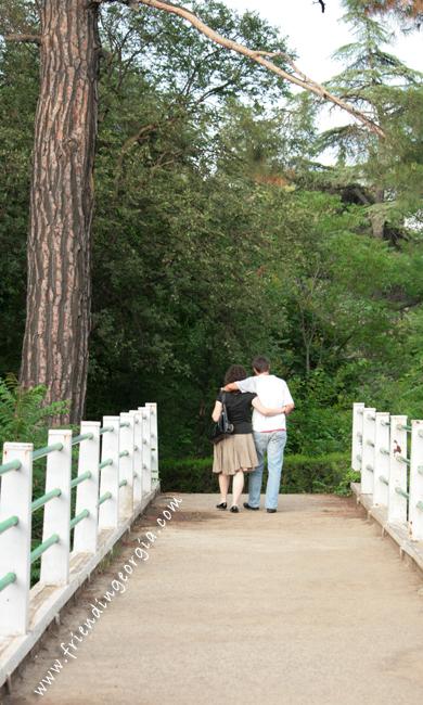 Botanic garden 4.jpg