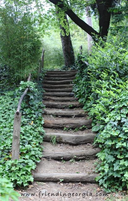 Botanic Garden 2.jpg