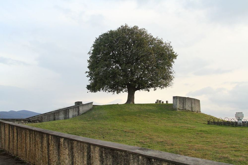 Дома, конечно, не сохранилось. Но в его родной деревне отгородили большой участок и выстроили музей где висят некоторые из работ Пиросмани.