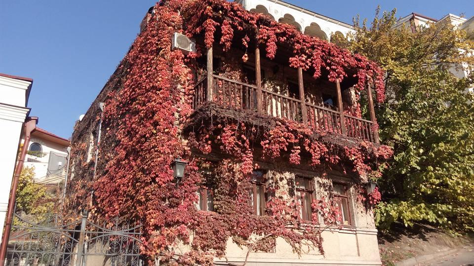 Дом Осень.jpg
