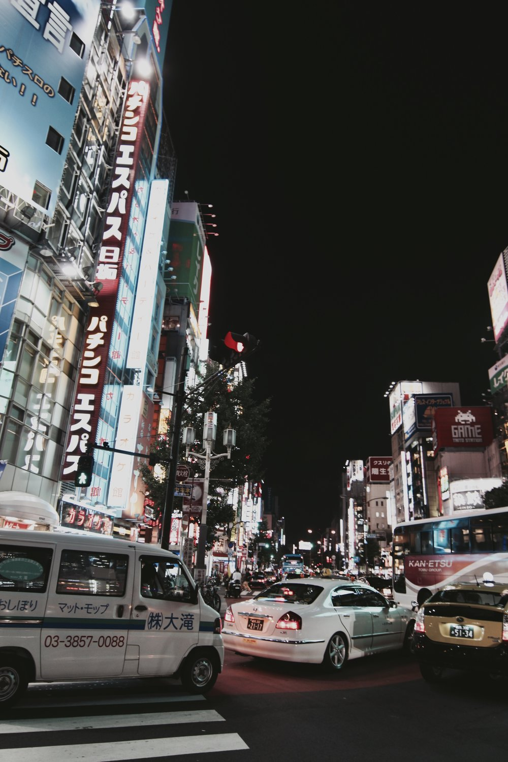 Shinjuku Nights.jpg