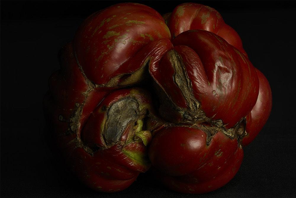 Pomodoro - 6 images