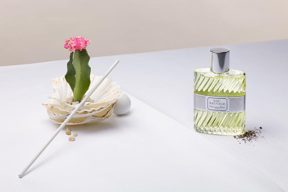 fragrance study_pw
