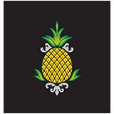ph-logo-no-tagline-PNG-150x150.png
