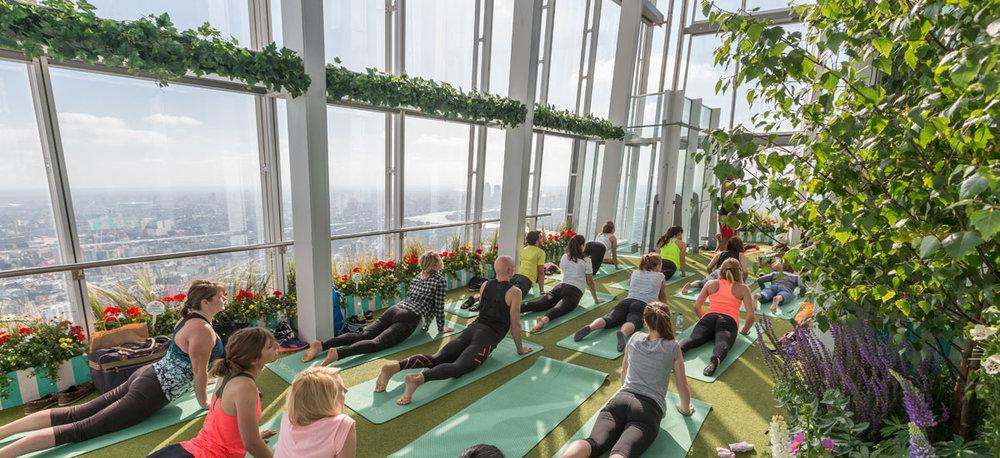 rooftop-yoga.jpg