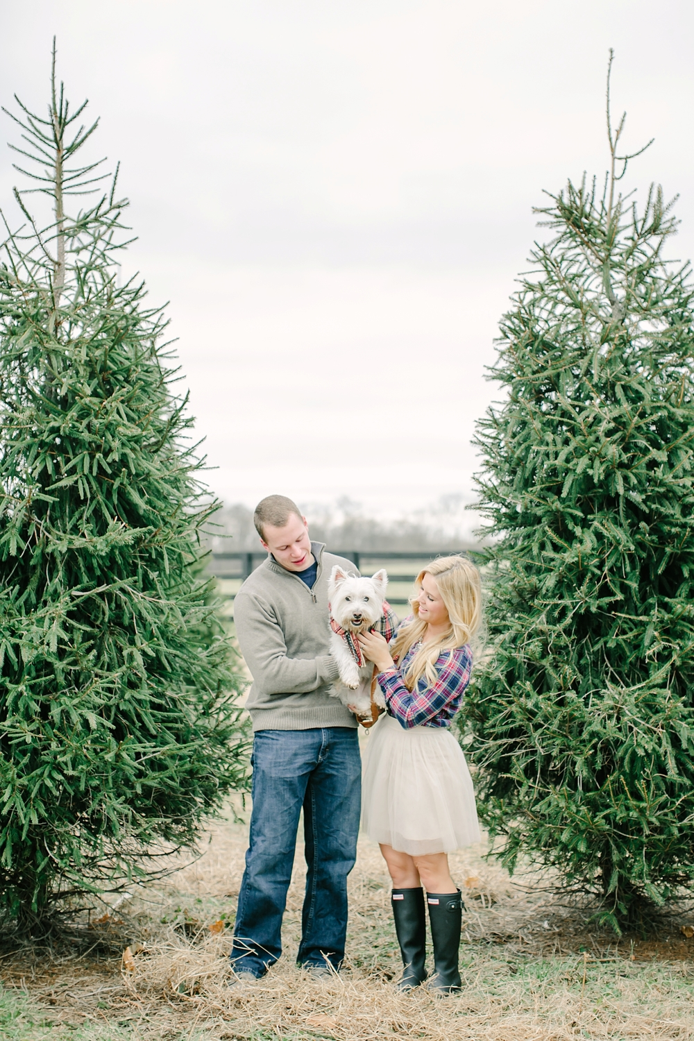 Christmas Tree Farm with Parris Chic Boutique — love & light photographs