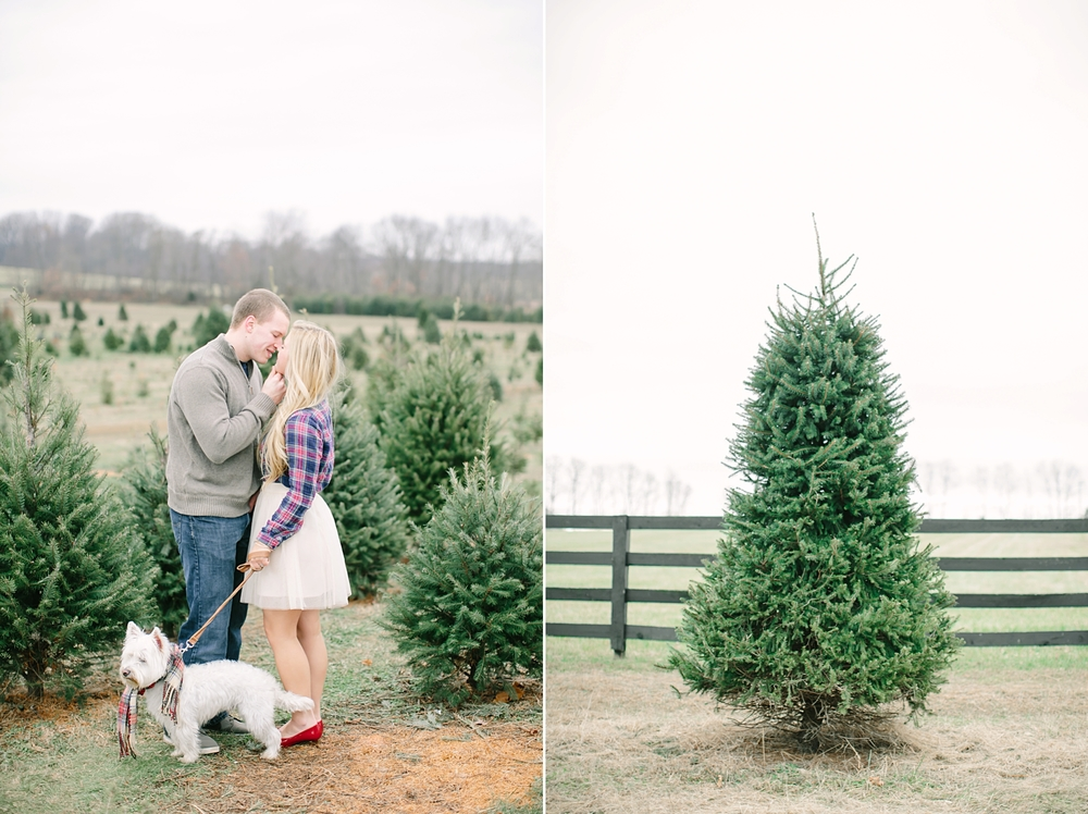 christmas-tree-farm-engagement-nj-11.jpg