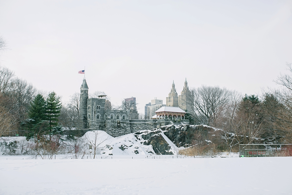 central_park_new_york_city_winter_engagement_photos_0020.jpg