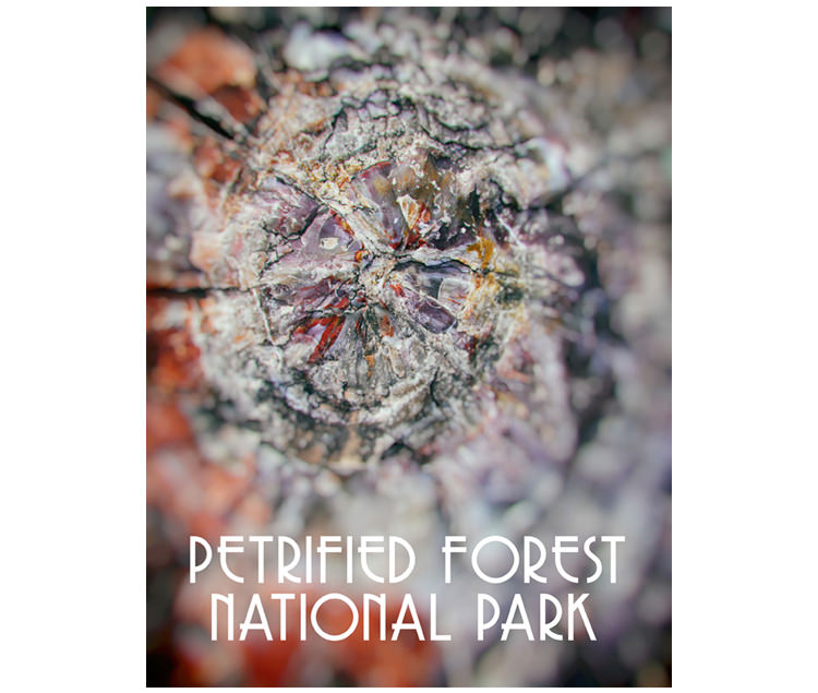 KyleHanson_CreativeBoulevards_PetrifiedForest_cover thumbnail.jpg