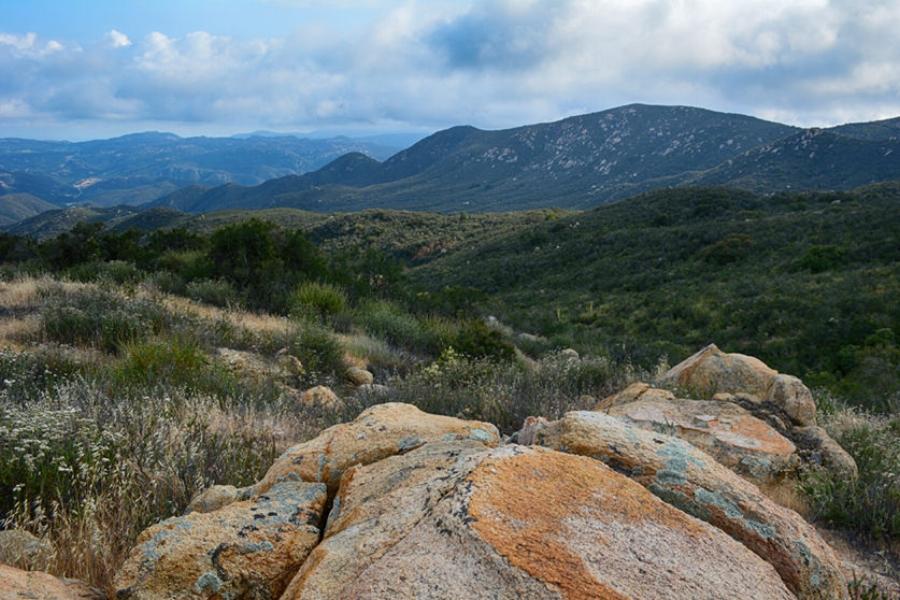San Mateo Canyon Wilderness