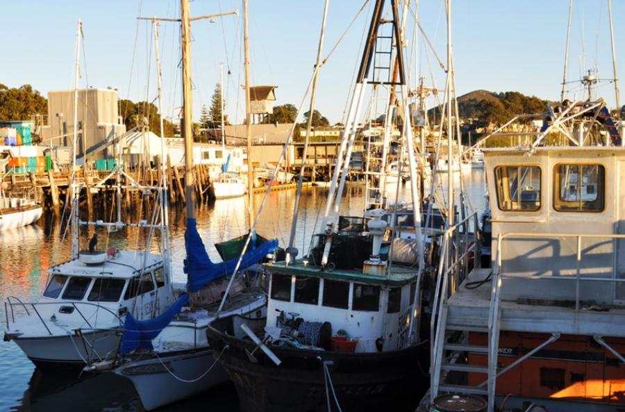 Embarcadero Morro Bay