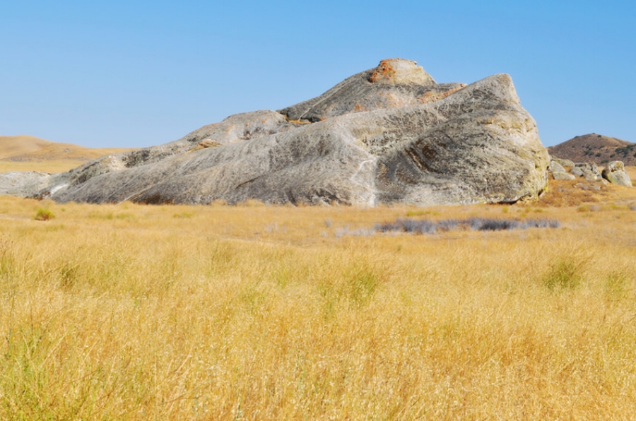 Carrizo Plain painted Rock