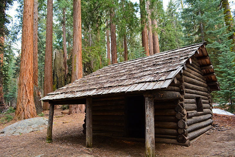 Cattle Cabin Sequoia
