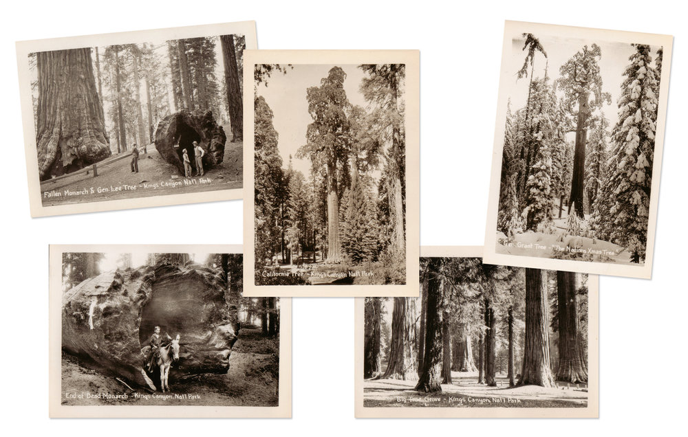 Kings Canyon National Park Antique Snapshots
