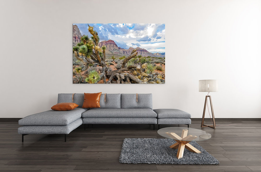 Red Rock Canyon Nevada Joshua Tree Fine Art Print