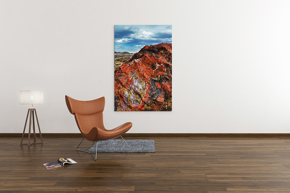 Arizona Petrified Forest National Park Fine Art Print