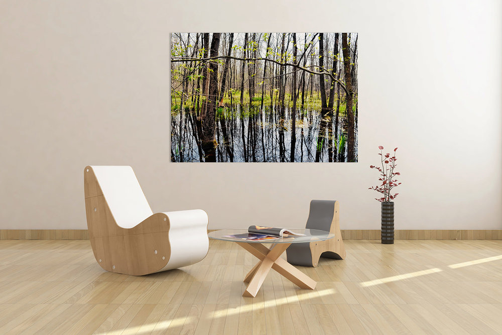 Indiana Dunes Marsh Reflections Fine Art Print