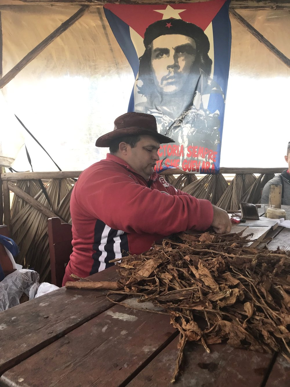 Cigar rolling in Vinales by Nate Jones