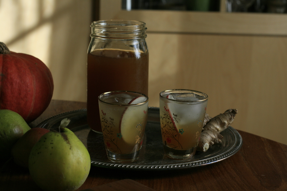 spiced cider shrub and soda