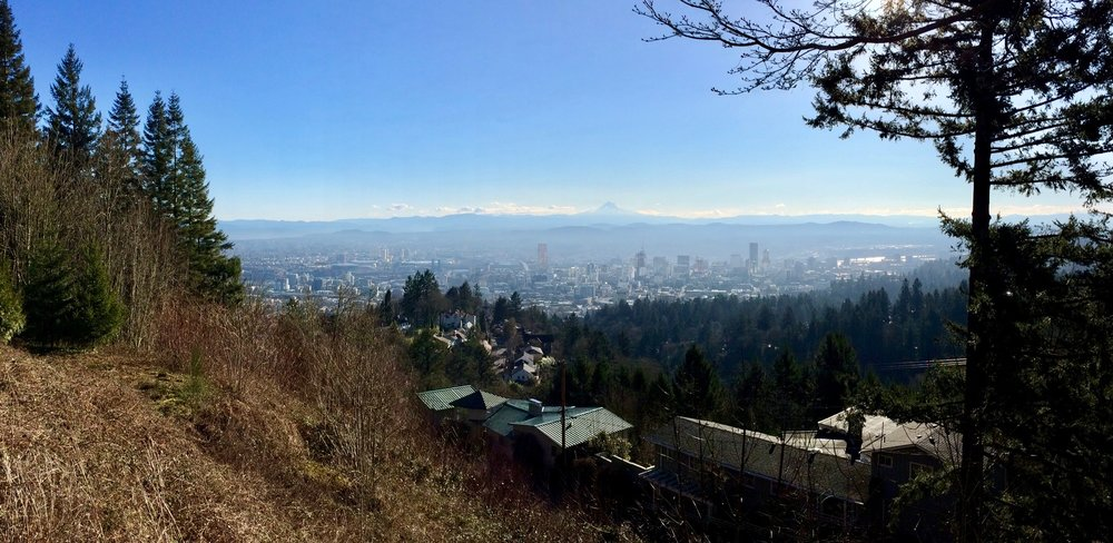 The view from Pittock Mansion. This was not yesterday. It was raining yesterday.