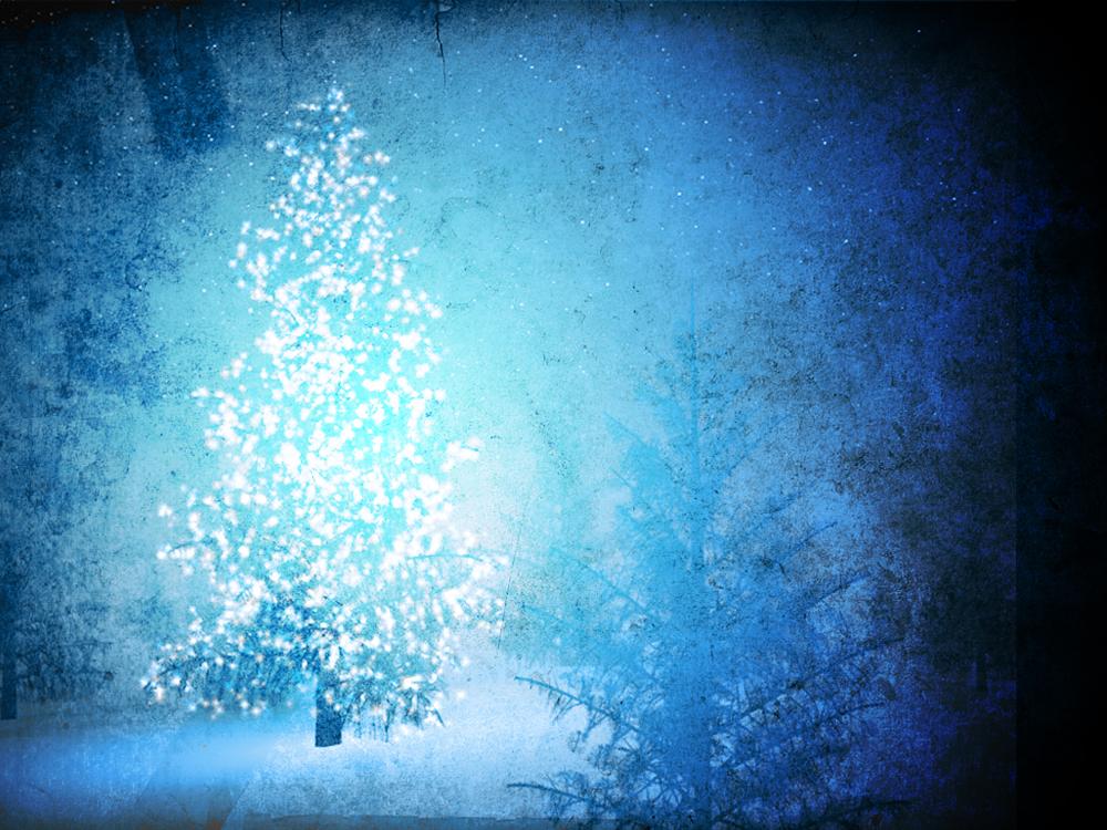 blue christmas tree.jpg