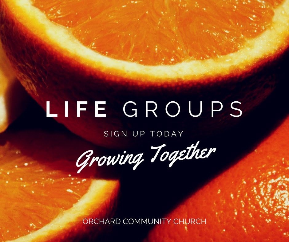 Are you ready to join a life group?! Sign-ups start SUNDAY AUGUST 20. Life Groups are a time to dive in to the Bible, grow, connect and share life with others.  These groups are an awesome place to lift up one another in prayer and truly do life. We don't have enough words to say just how much we love them…. We invite you to become part of our community!  For more information check the Life Groups table outside or fill out the insert in the Worship Folder.
