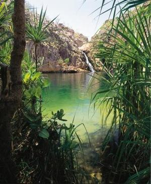 Barramundi_Falls_Northern_Territory-medium.jpg