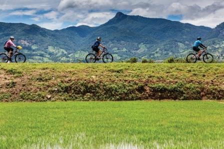 Cycle Vietnam & Cambodia This adventure combines cycling through villages from Ho Chi Minh City to the famed temple Angkor Wat. The journey begins in Ho Chi Minh City, left behind for the quieter Cu Chi Tunnels. Crossing over to Cambodia, lush green countryside and fertile rice fields stretch beyond sight. The finale is an in-depth cycle of the renowned Angkor temples. More Information→