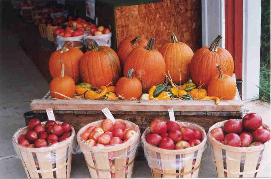 ApplesPumpkins.jpg