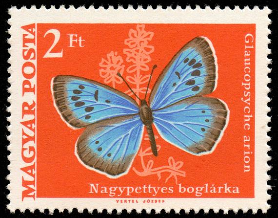 1971_Moth_Butterfly_200.jpg