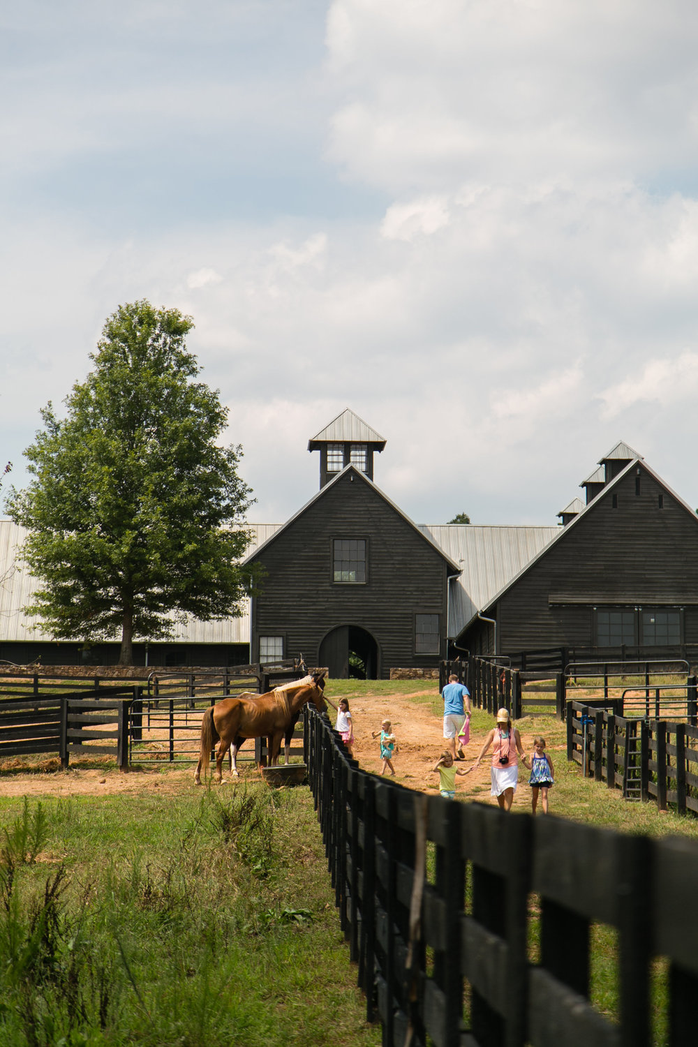 Serenbe Stables